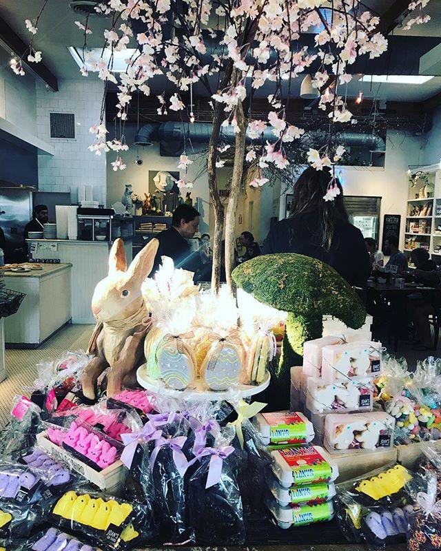 Klinikken holder lukker holder påskeferie.  Vi er tilbage igen tirsdag d 23 april. Glædelig påske 🐥🐣🌸