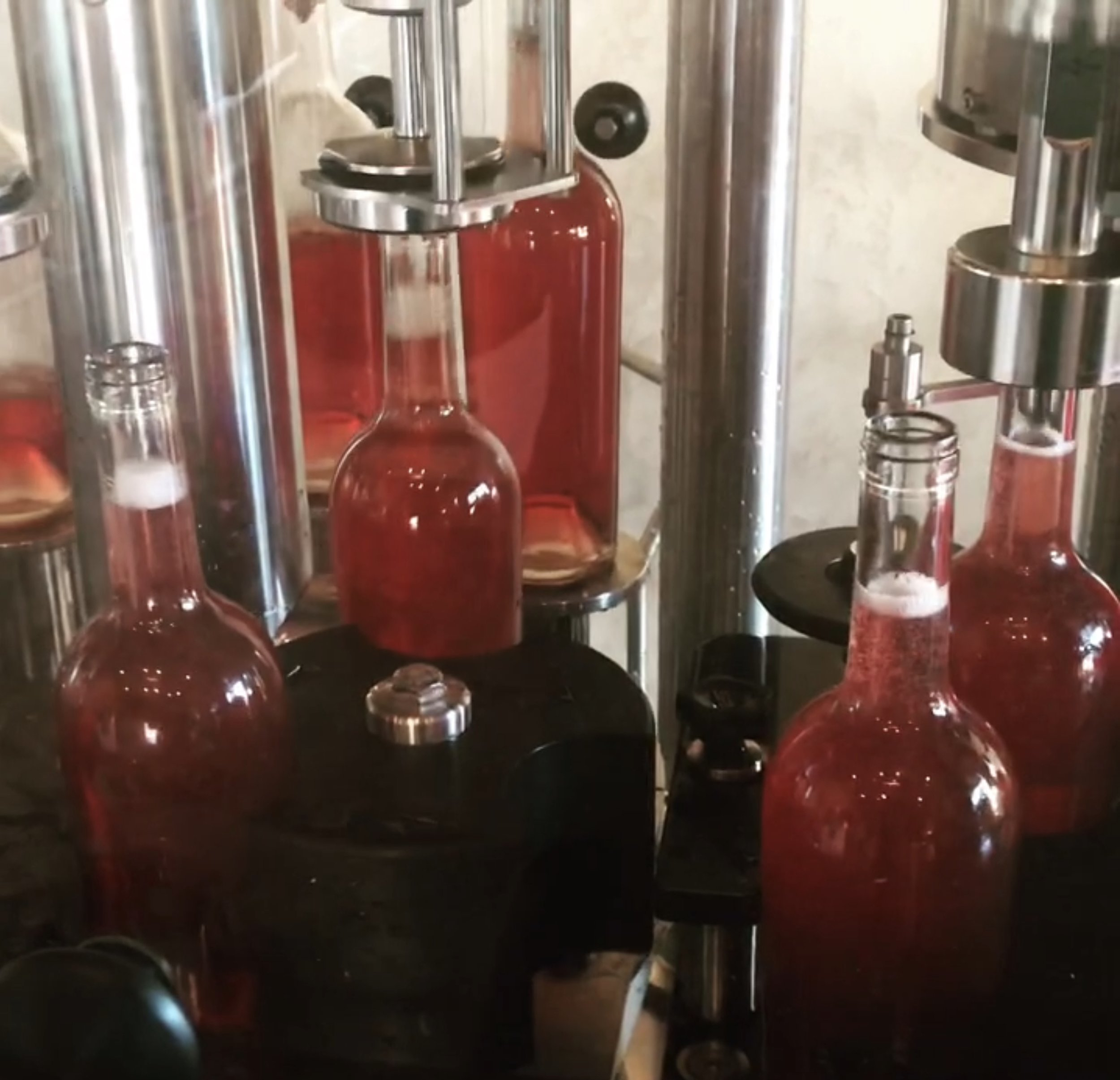 wine bottling by eno-logic
