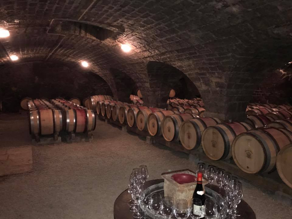 bulk wine procurement by eno-logic
