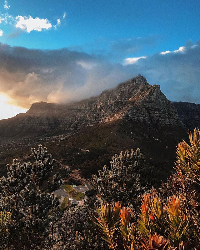 I miss the warmer weather, Early sunrises and late sunsets, yeah, I think summer can return now 🌞 #capetown #southafrica #tablemountain #hike #lionshead #lionsheadhike #photographer #landscapes #beautifuldestinations
