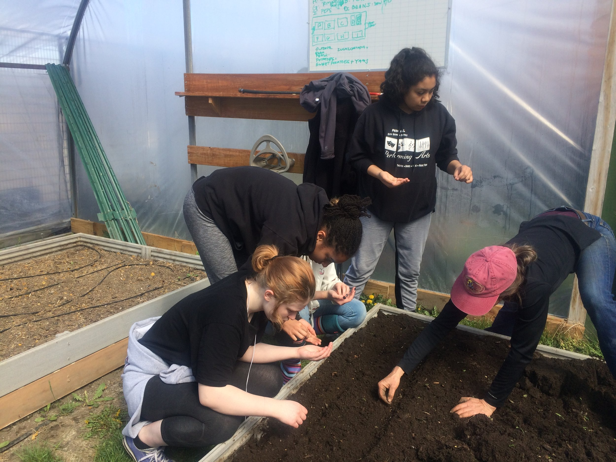Planting at the middle school greenhouse