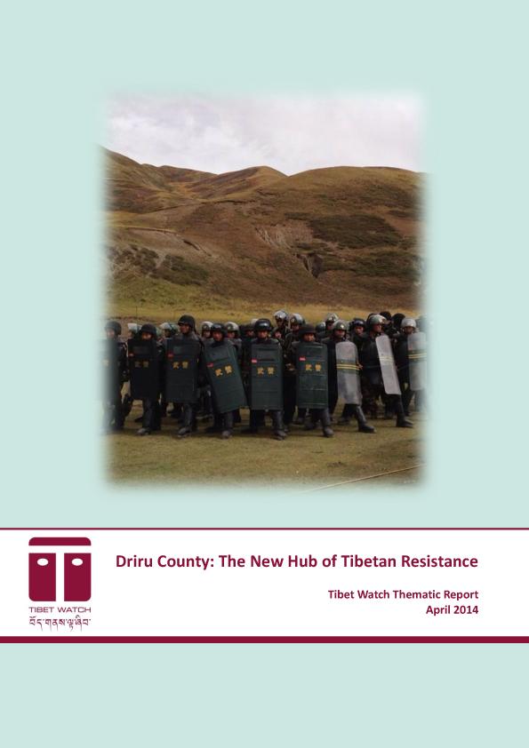 driru_county_thematic_report-1.jpg