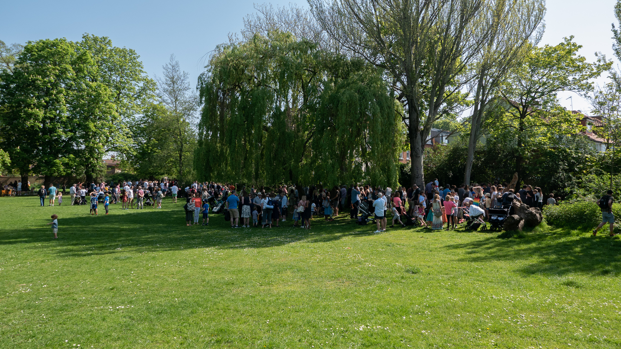 BCA Duck Race 2019 - 3.jpg