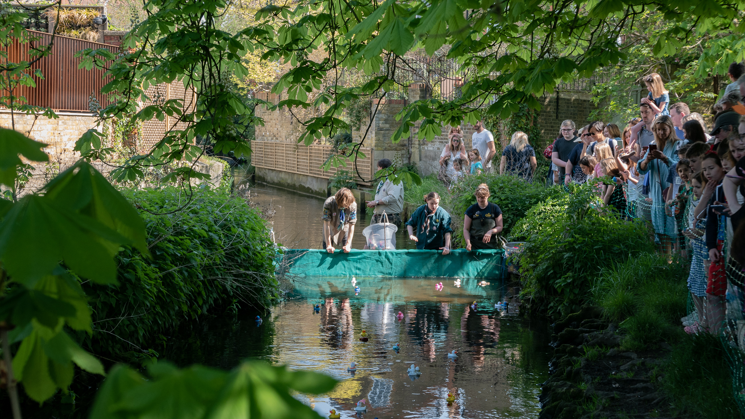 BCA Duck Race 2019 - 10.jpg