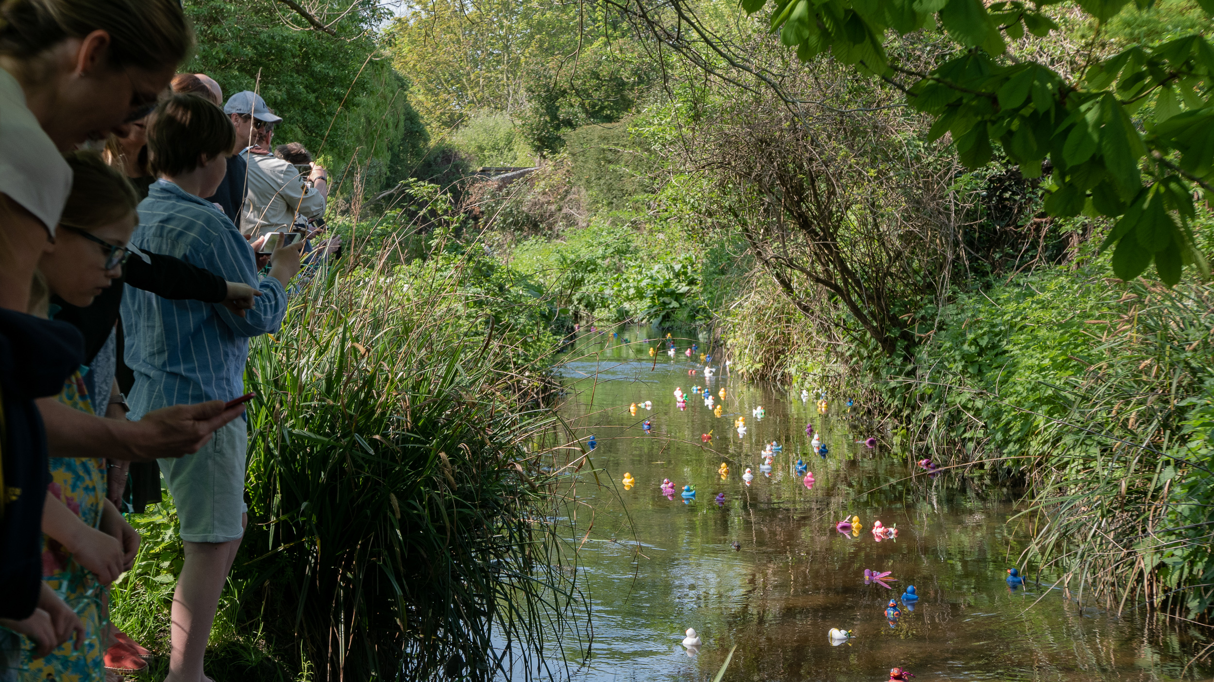 BCA Duck Race 2019 - 9.jpg