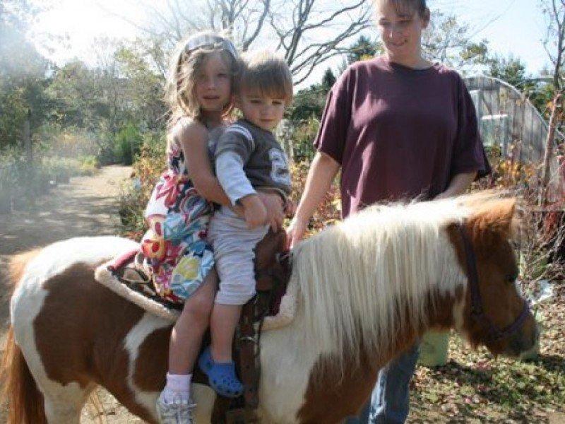 PONY RIDES - OAKLEAF'S ANNUAL FAMILY FUN DAY