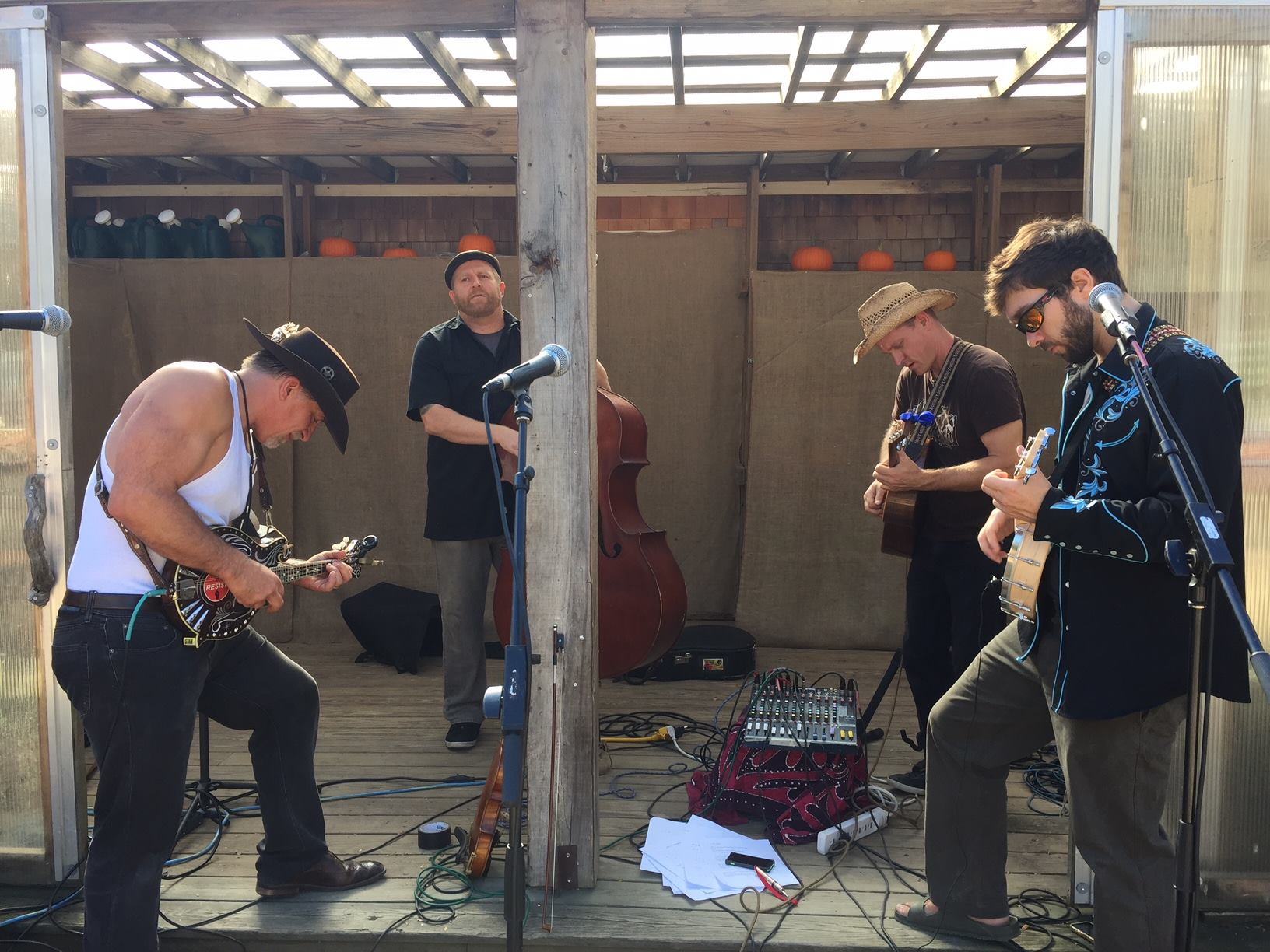 LIVE MUSIC - LIVE MUSIC WITH THE PICKPOCKET BLUEGRASS BAND