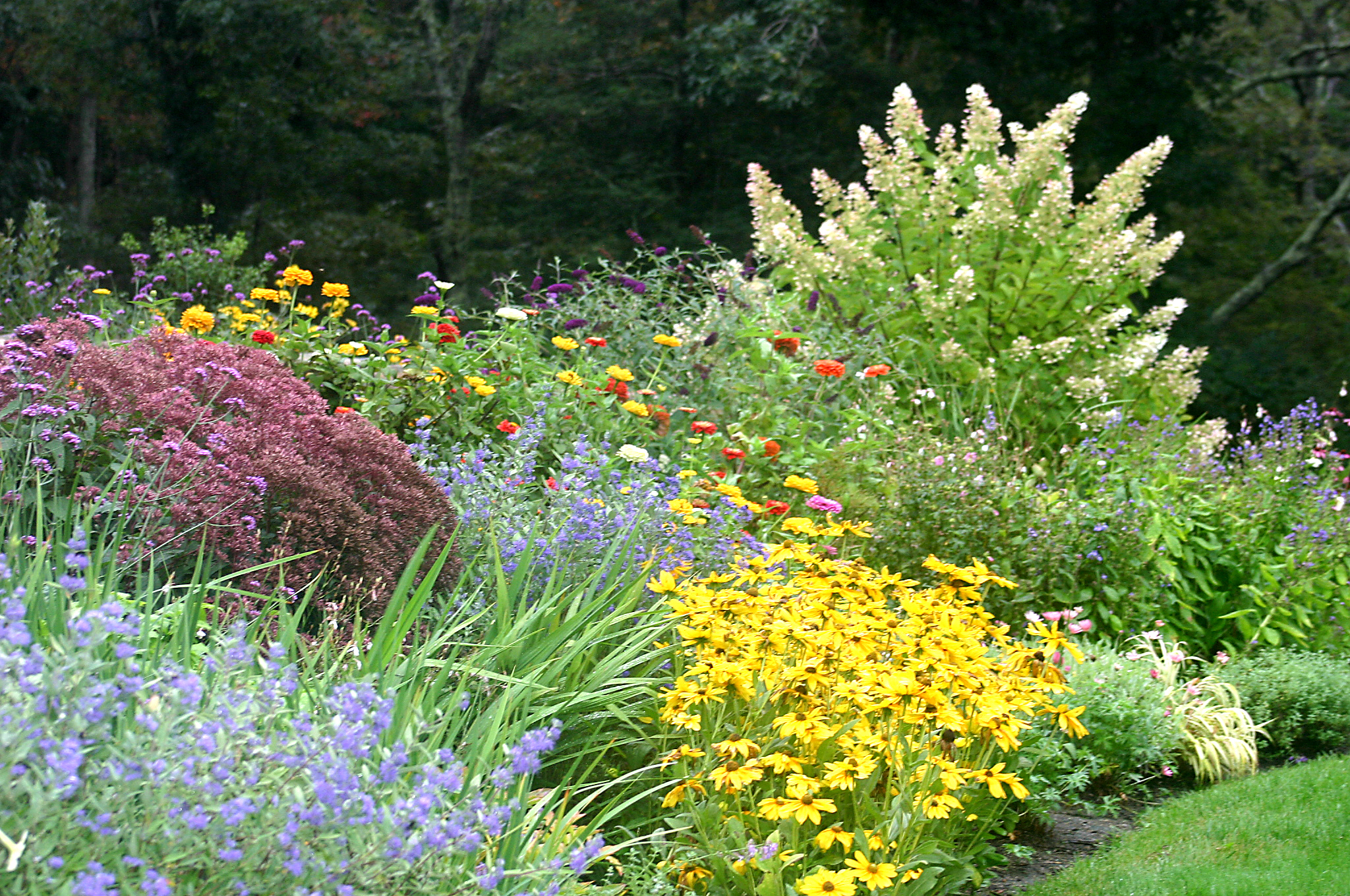 - Annuals, perennials, shrubs, and trees.