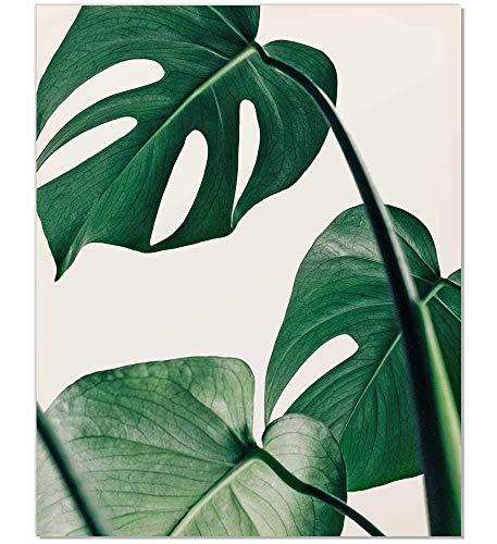 Tropical Leaf Print - $13.90