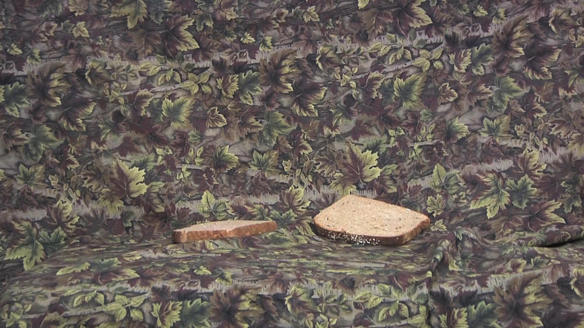 BinA_bread.jpg