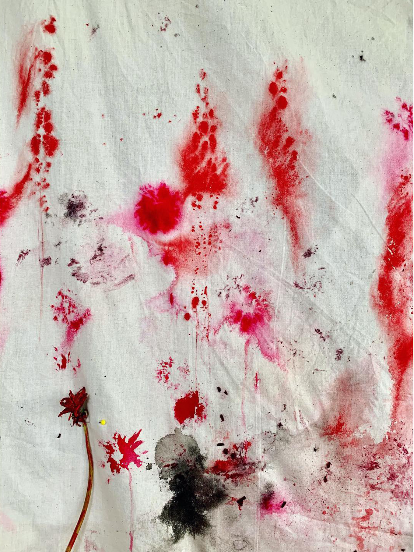 Detail     Sensitive Fern, Dandelion, Hibiscus Dye, Acrylic, Ink, Pond Water