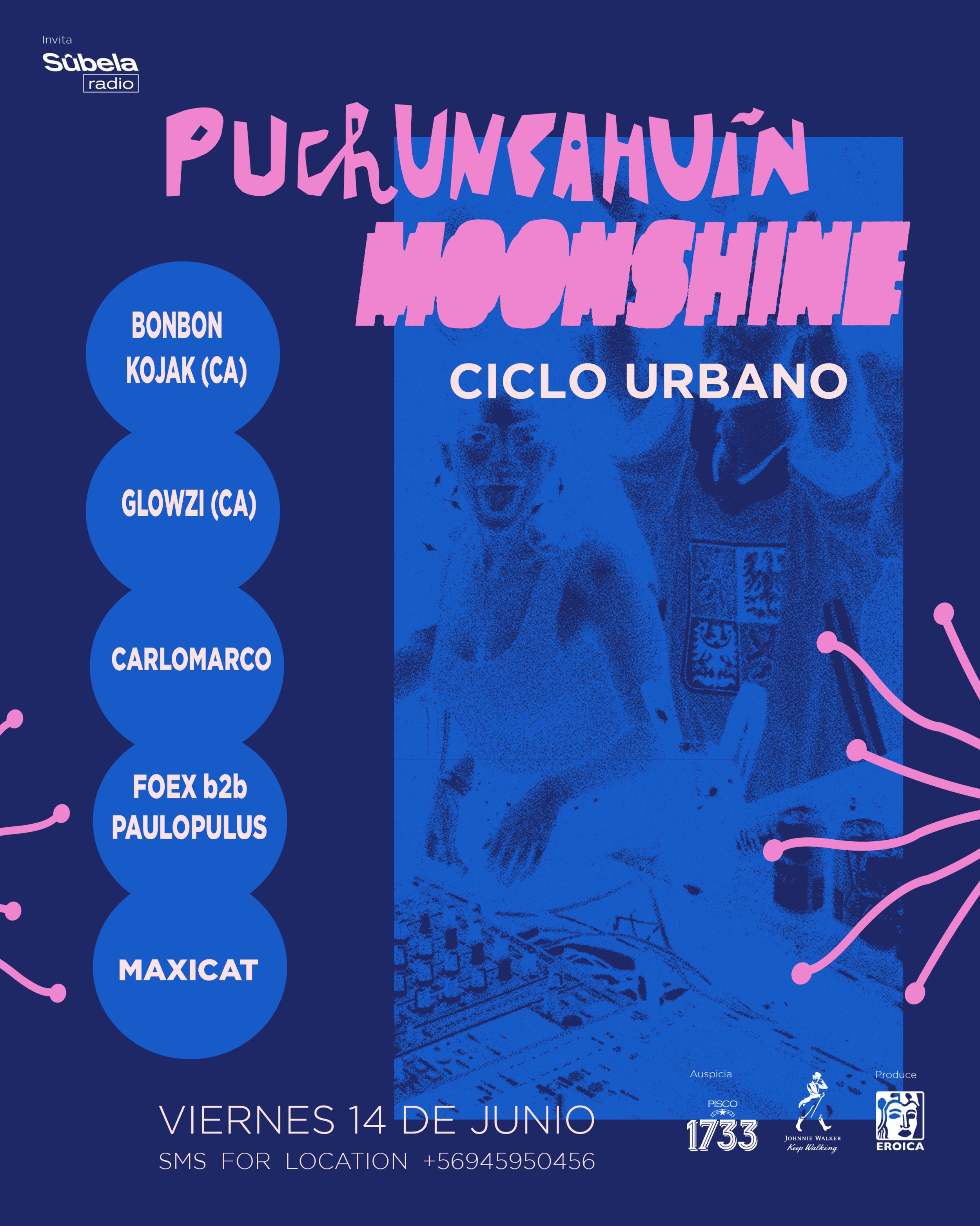 afiche-puchuncahuin.png