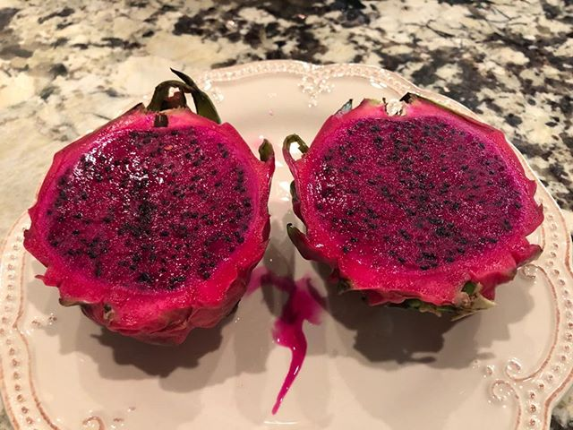 The gorgeous, vibrant dragon fruit. Adriana and I decided to #tastetest. Native to the #Caribbean and #SoutheastAsia. It's texture is more akin to kiwi; it's taste is rather sweet bland. I want a shirt that color, though! #tropicalfruit #dragonfruit #magenta #tastethecaribe #gigisorganics #unretouched