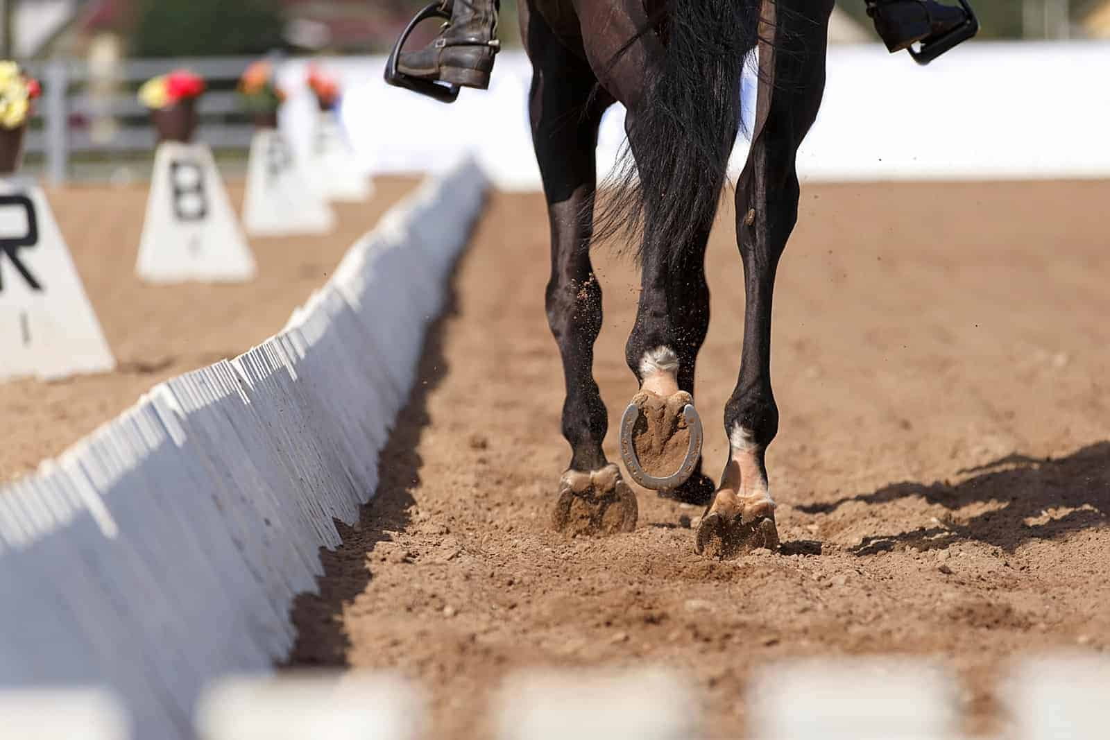 dressage-horse-hooves-in-arena-1.jpg
