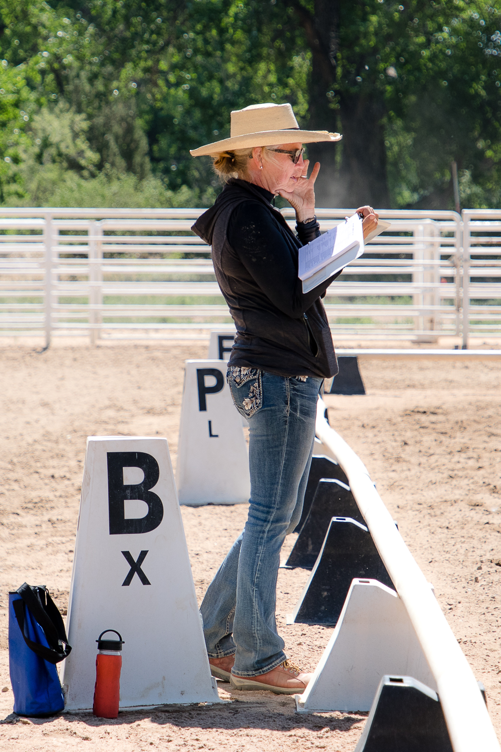 Sometimes, learning new dressage tests is a challenge for the mind. With AVDA, dressage test readers help riders not only with the tests but with the directions of the letters. And reading the tests for the riders also helps the reader learn those tests from the ground.