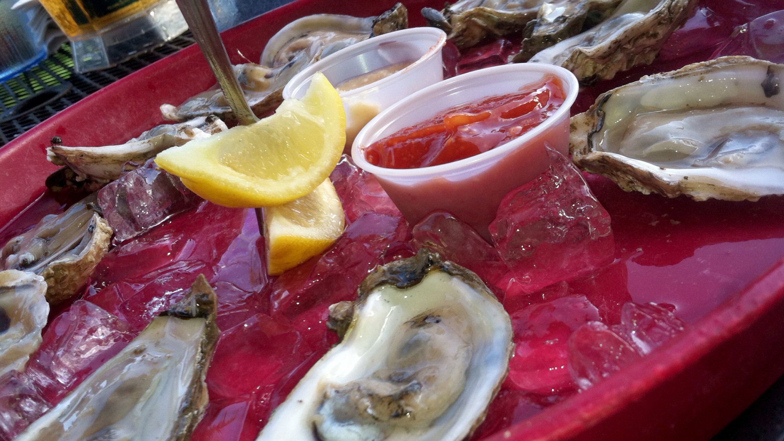 oysters_pic.jpg