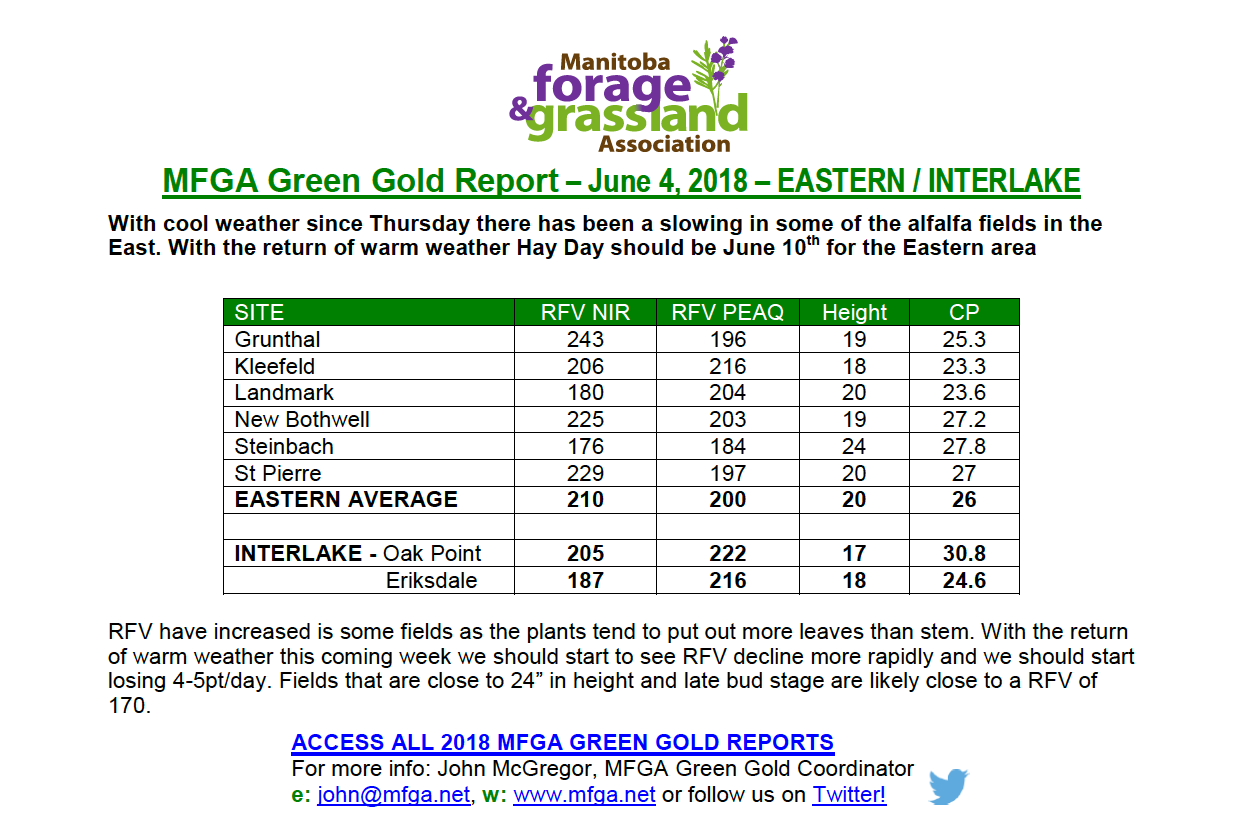 Green-Gold-Report.png