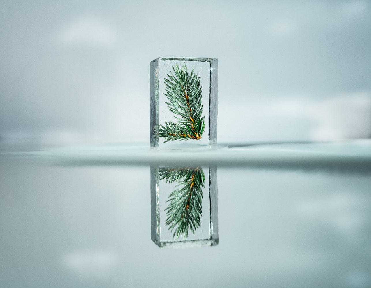 nord_ice_cube-32.jpg