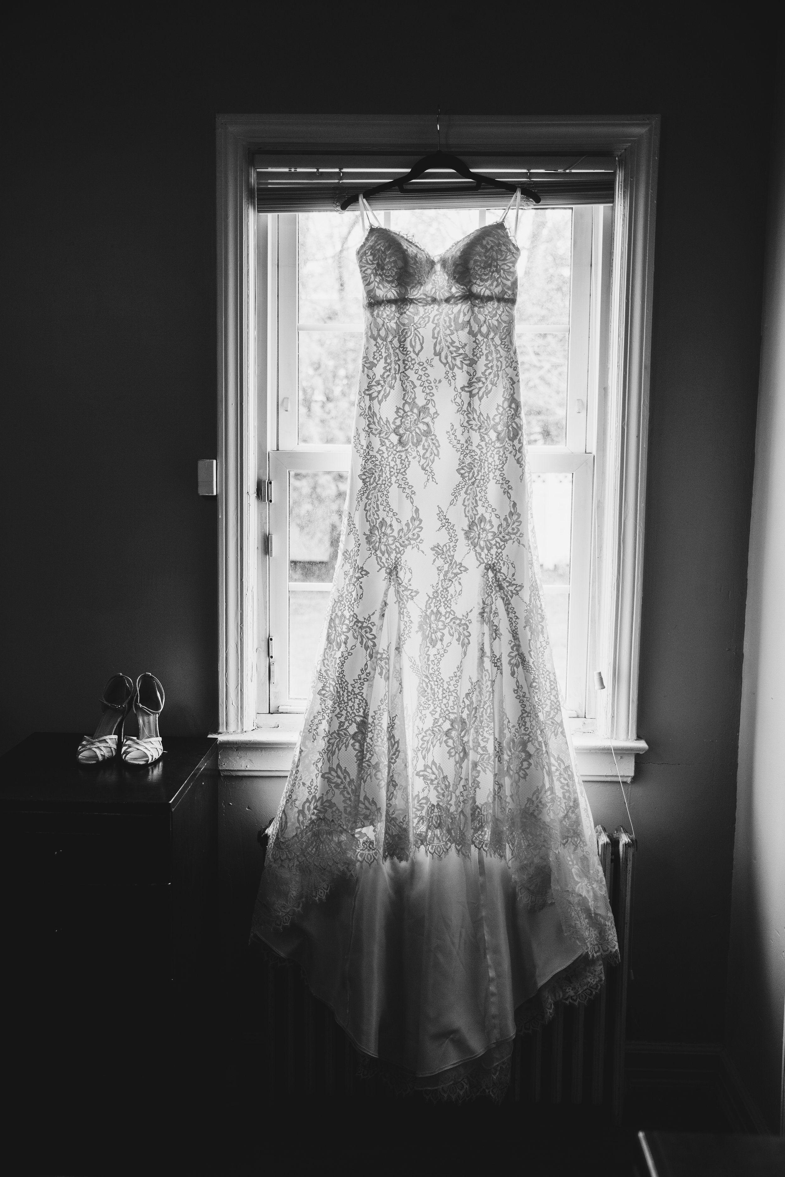 The Gown 2.jpg