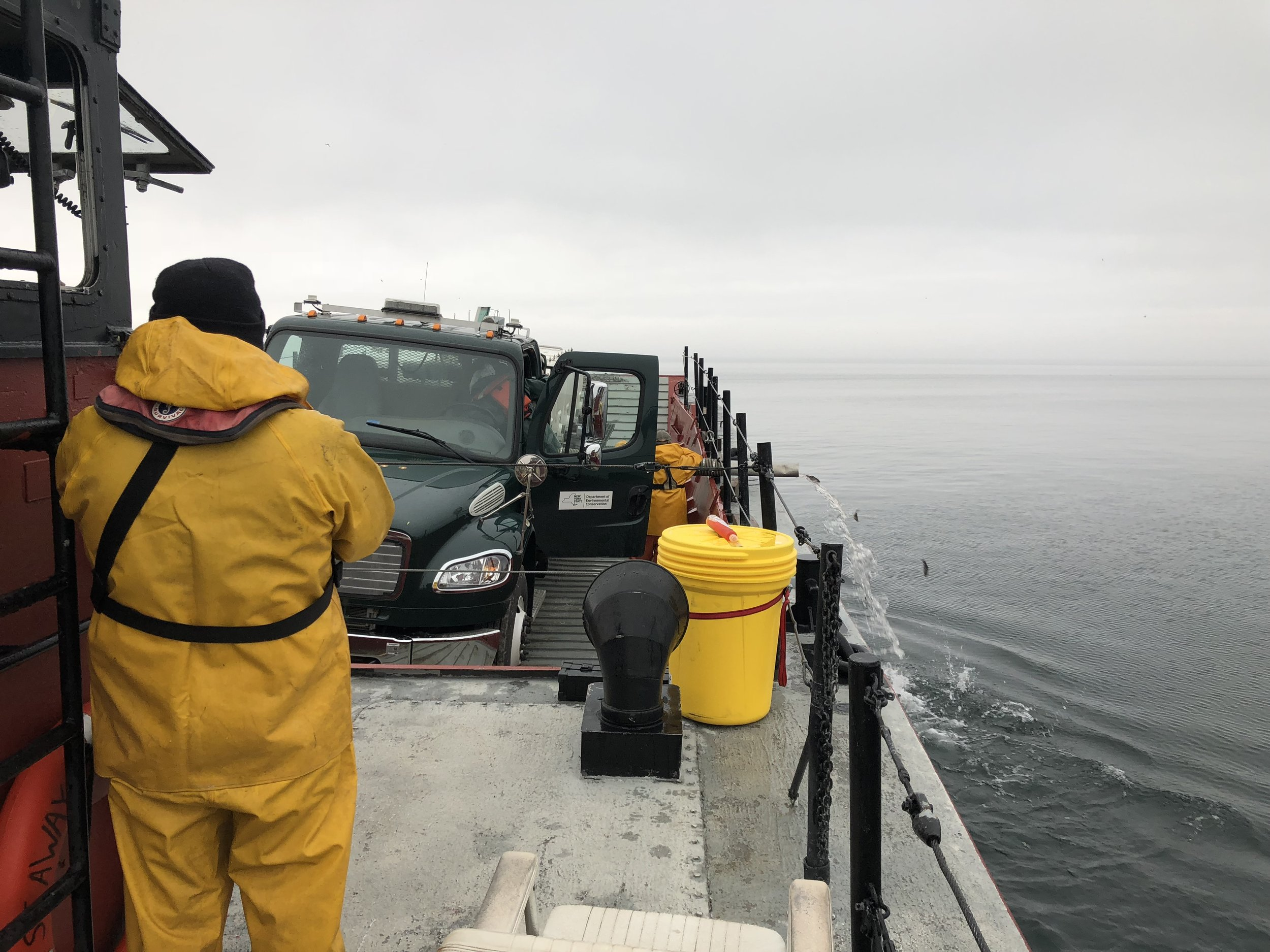 Marine transportation, fish stocking, Lake Ontario, Department of Environmental Conservation, Seaway Marine Group
