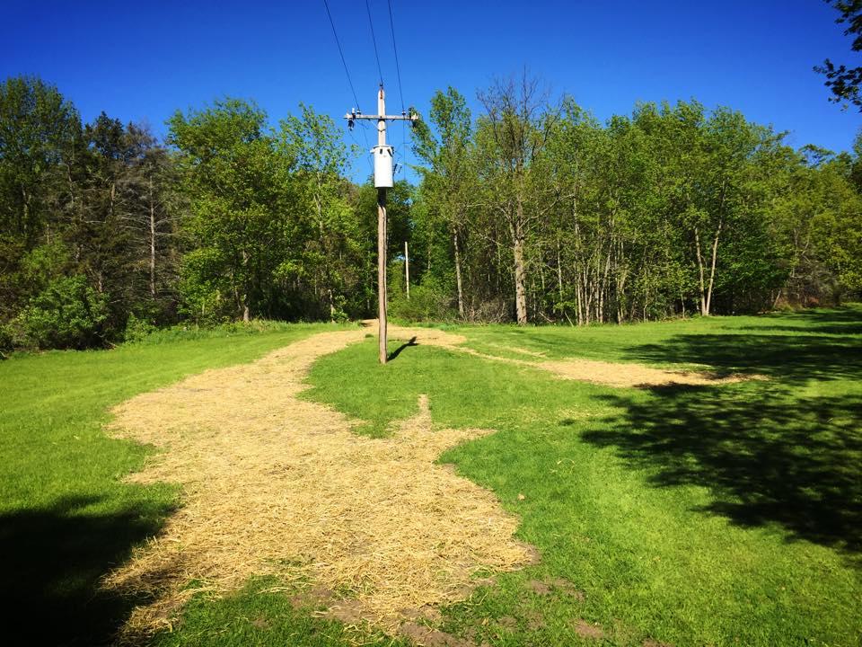 Loaming, Seeding &     Re-grading -