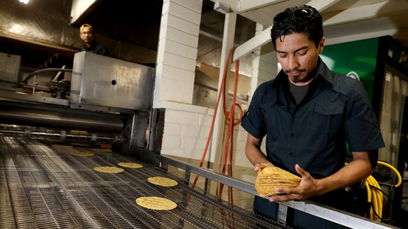 Omar Ahmed, 33, co-owner of Kernel of Truth tortilla company, counts yellow corn tortillas at their facility in Boyle Heights. (Gary Coronado / Los Angeles Times)