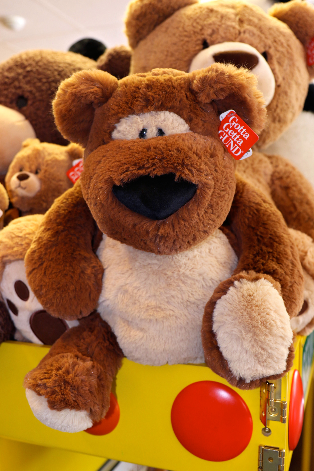 Stuffed-Animal-Bear.jpg