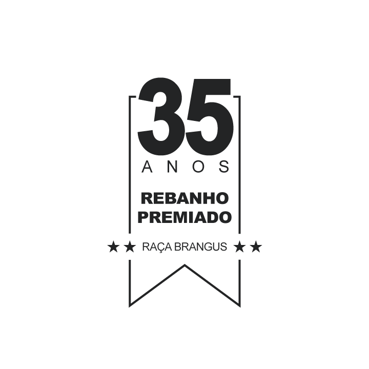 Prancheta-3-cópia.png