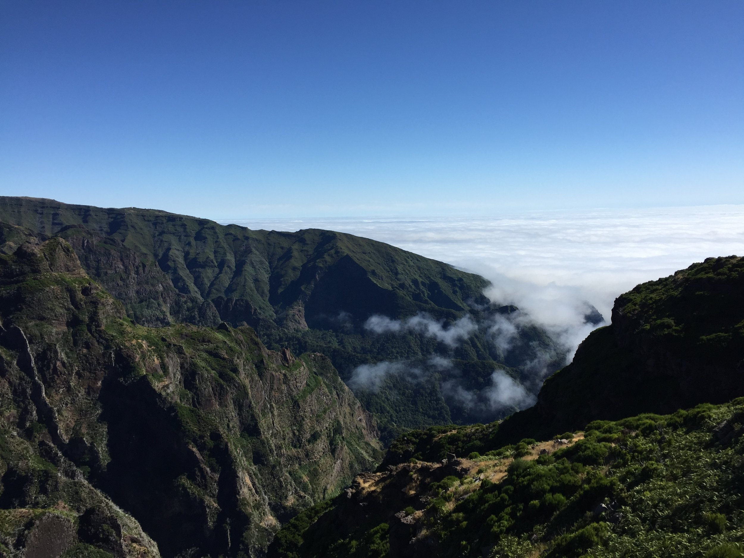 Madeira mountains.JPG