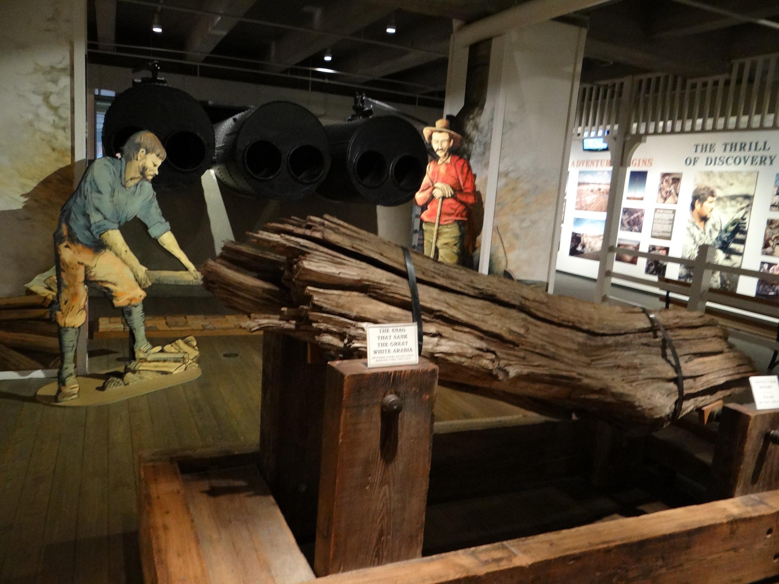 The log that sunk the Arabia