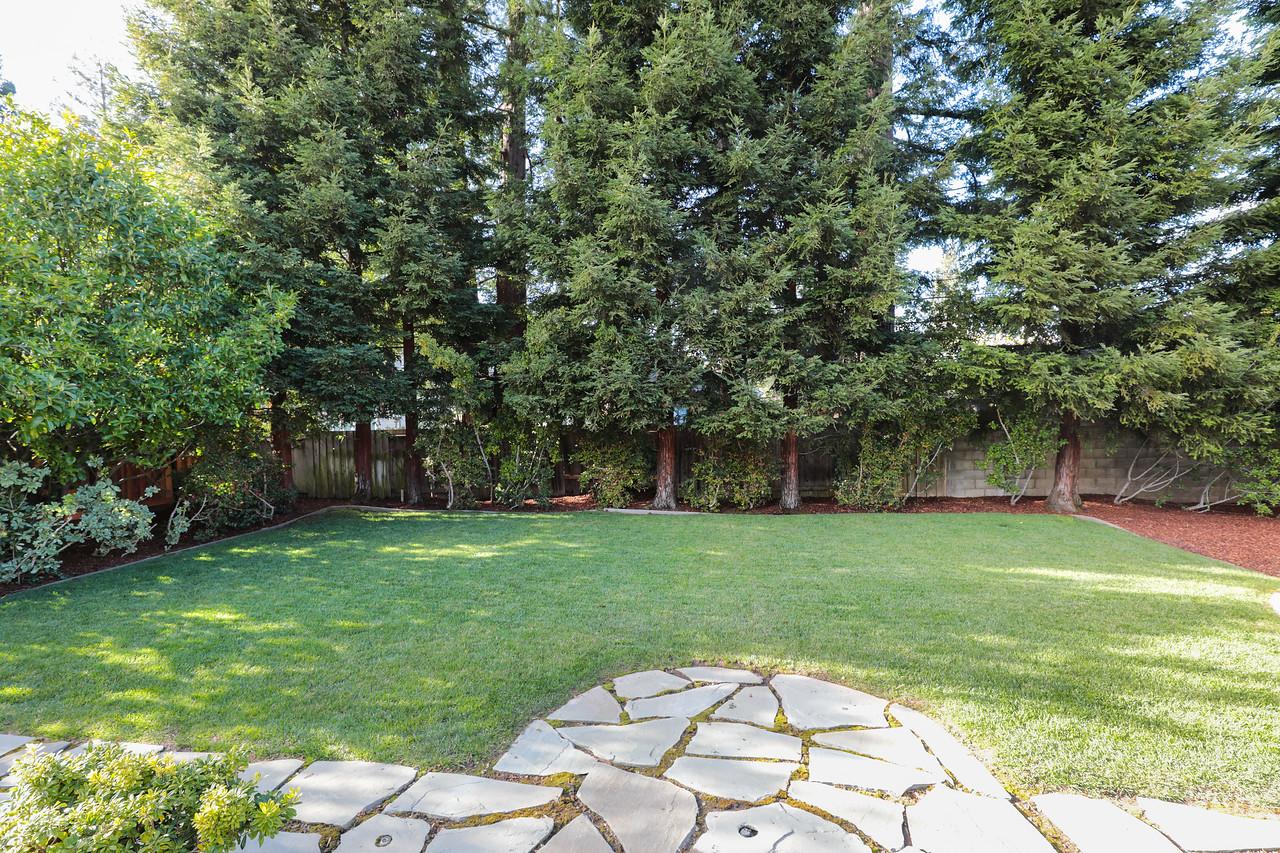 1824 Doris Backyard Blu Skye Media-0719-X2.jpg