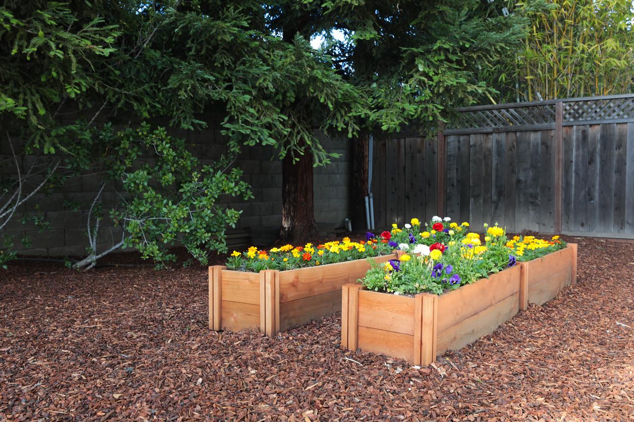 1824 Doris Backyard Blu Skye Media-0721-X2.jpg