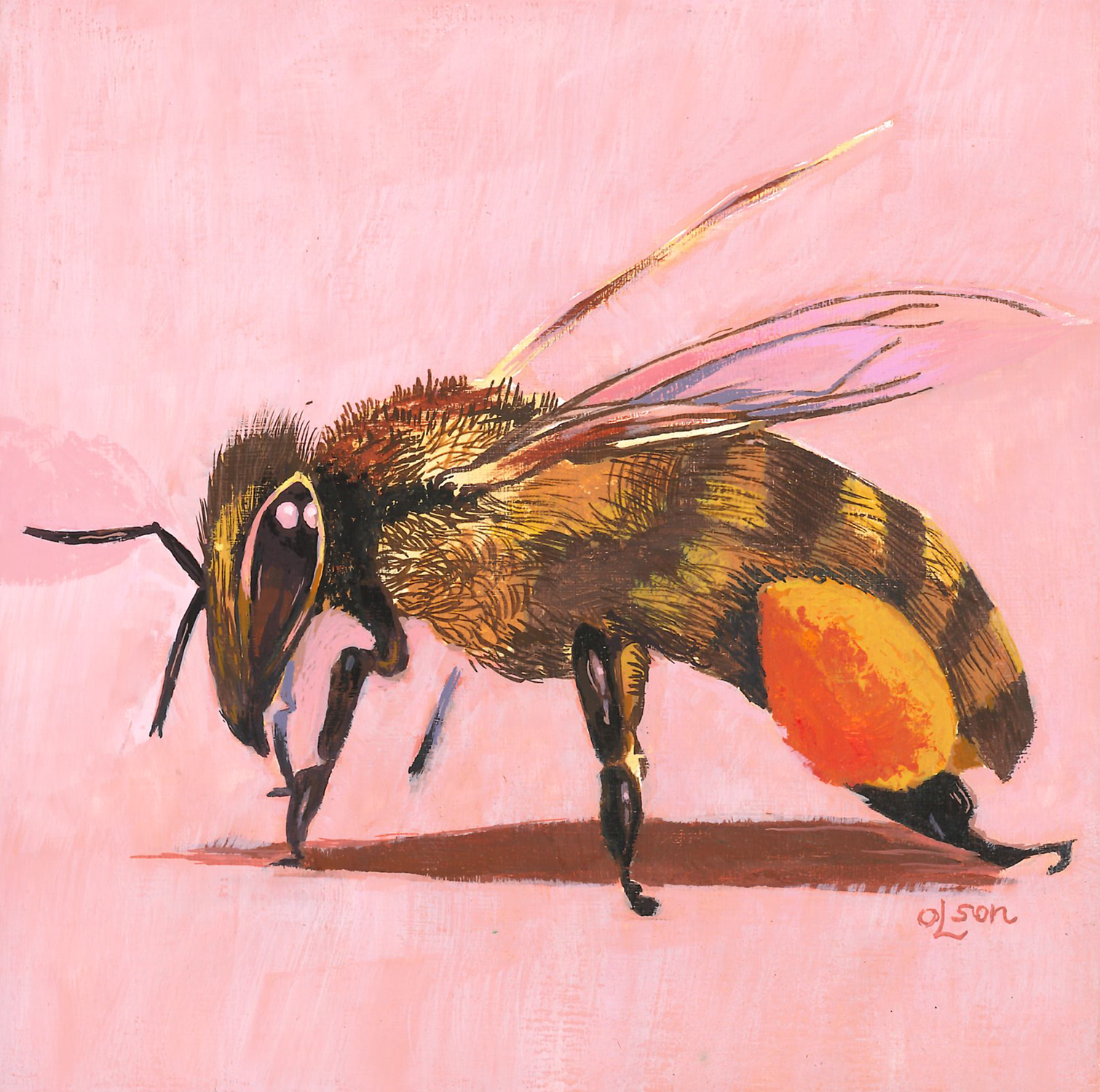 christopherolson_honey bee.jpg
