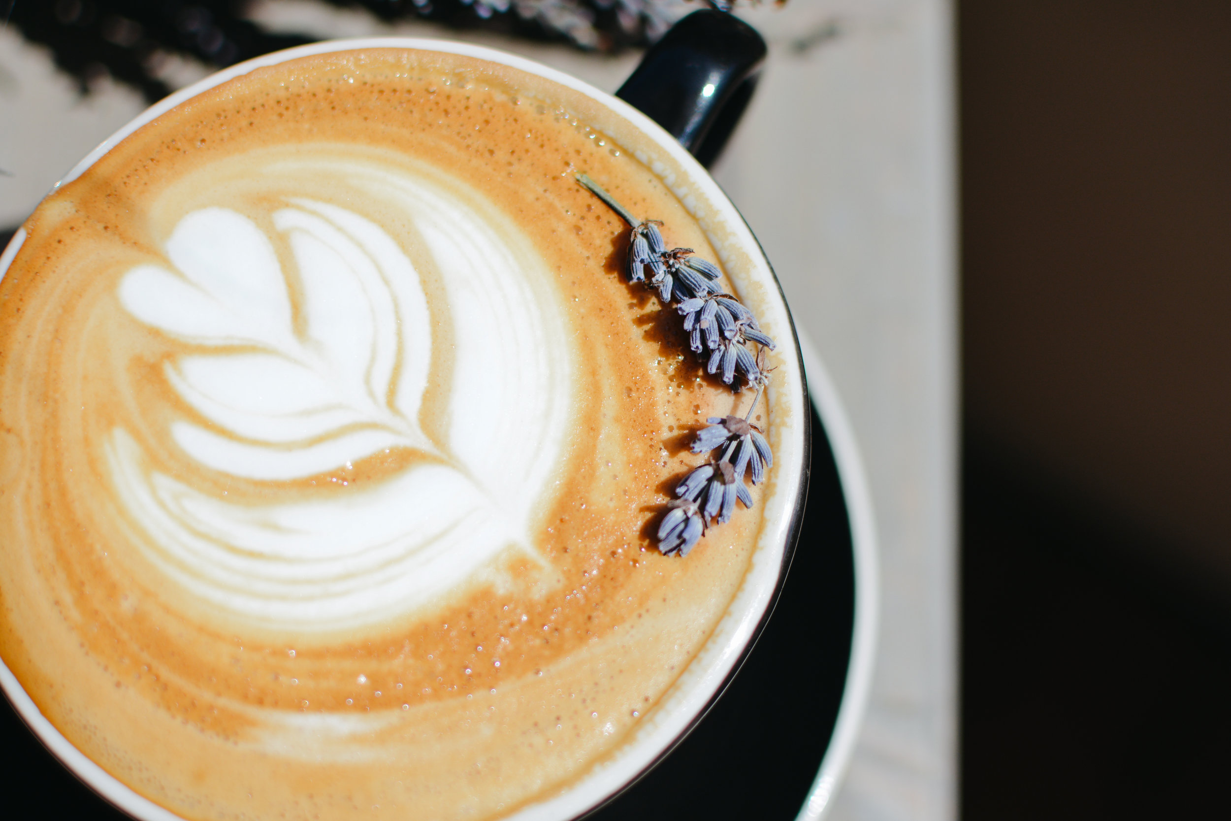 April St. Augustine Coffee Specials