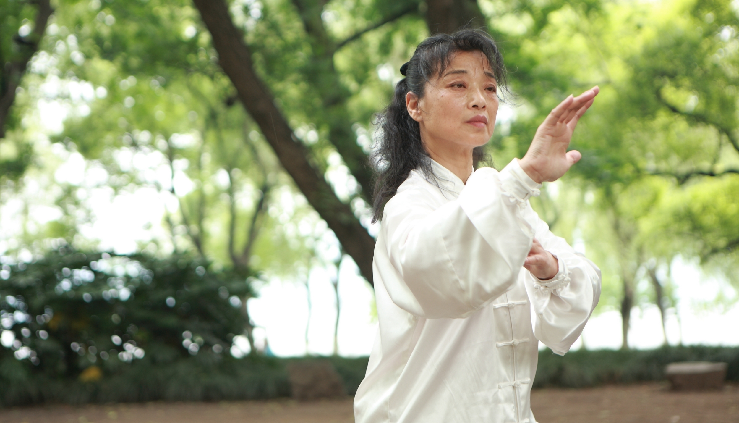 World Tai Chi Day St. Augustine