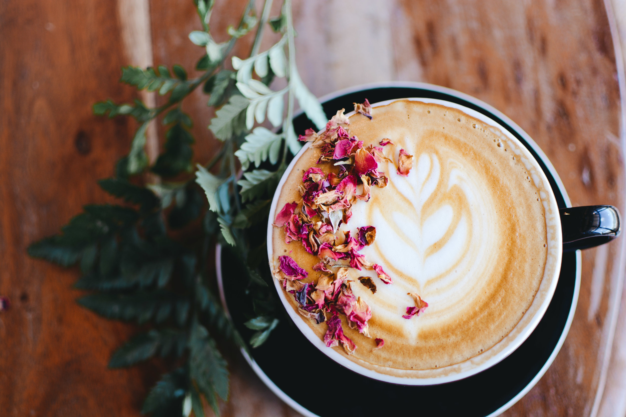 St. Augustine Coffee May Specials