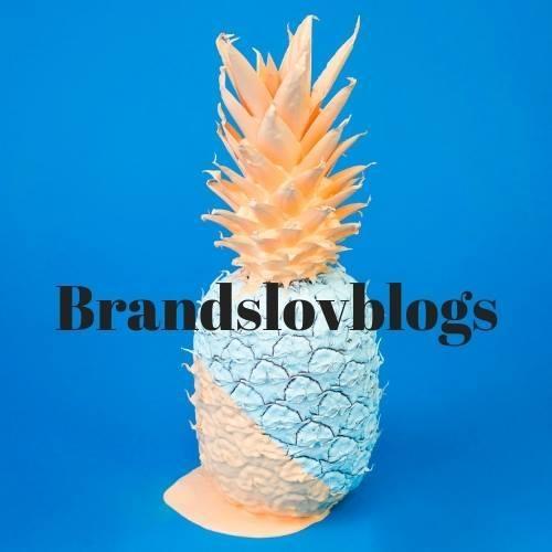 brandslovblogs.jpg