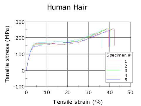 A graph that shows the tensile strength of hair to be around 200 to 250 MPa.     Image via      Instron