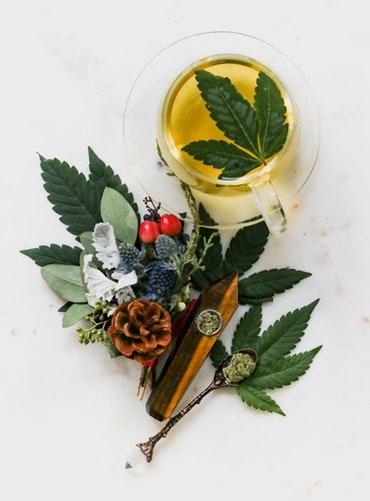 marijuanaedibles.jpg