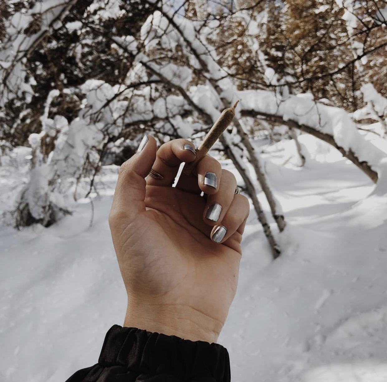joint-nails-and-snow.jpeg