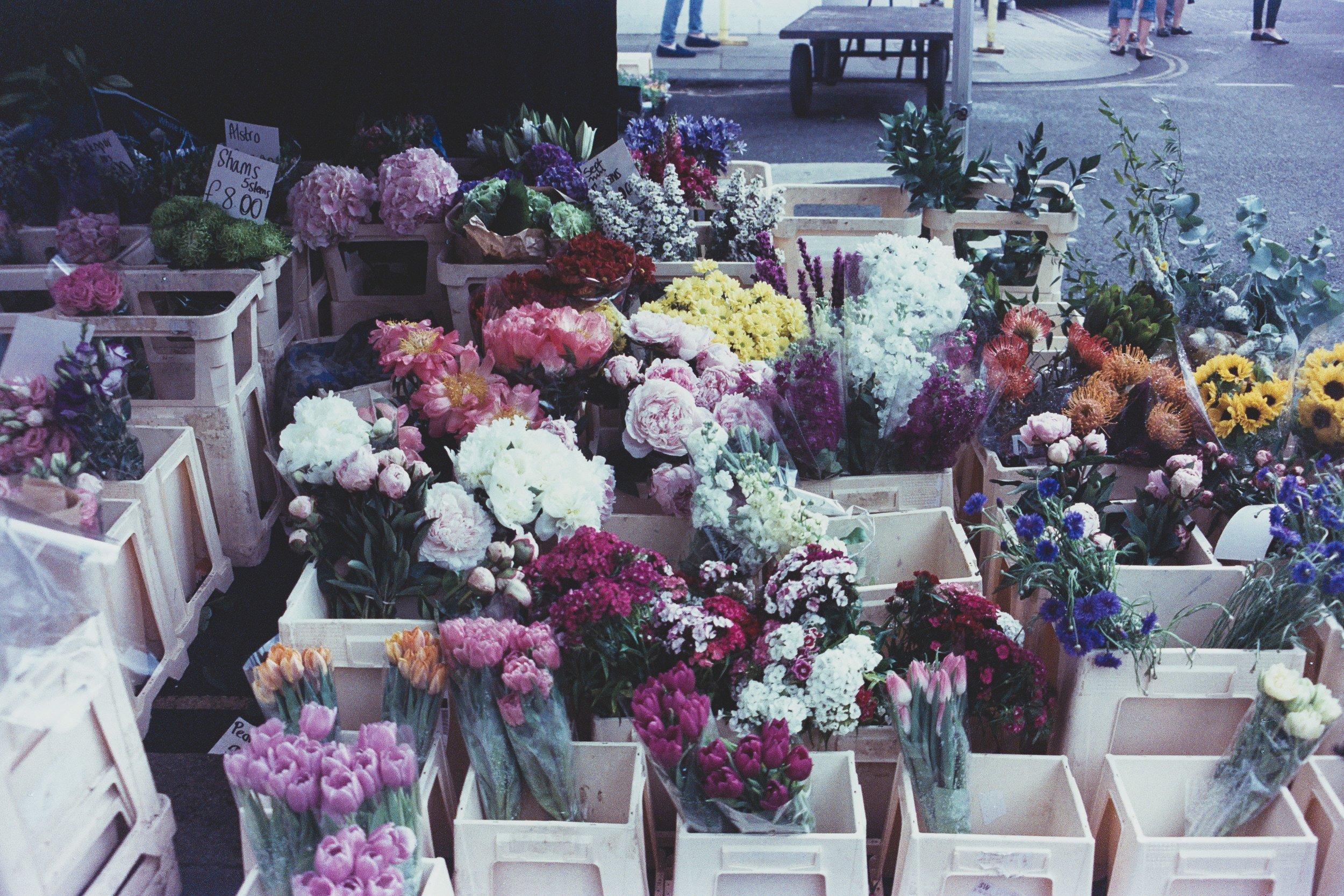 florencia-viadana-730004-unsplash.jpg