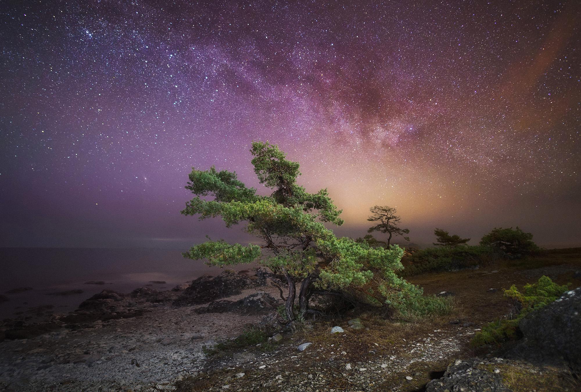 Ett ljus från himmelen 98 x 68 cm