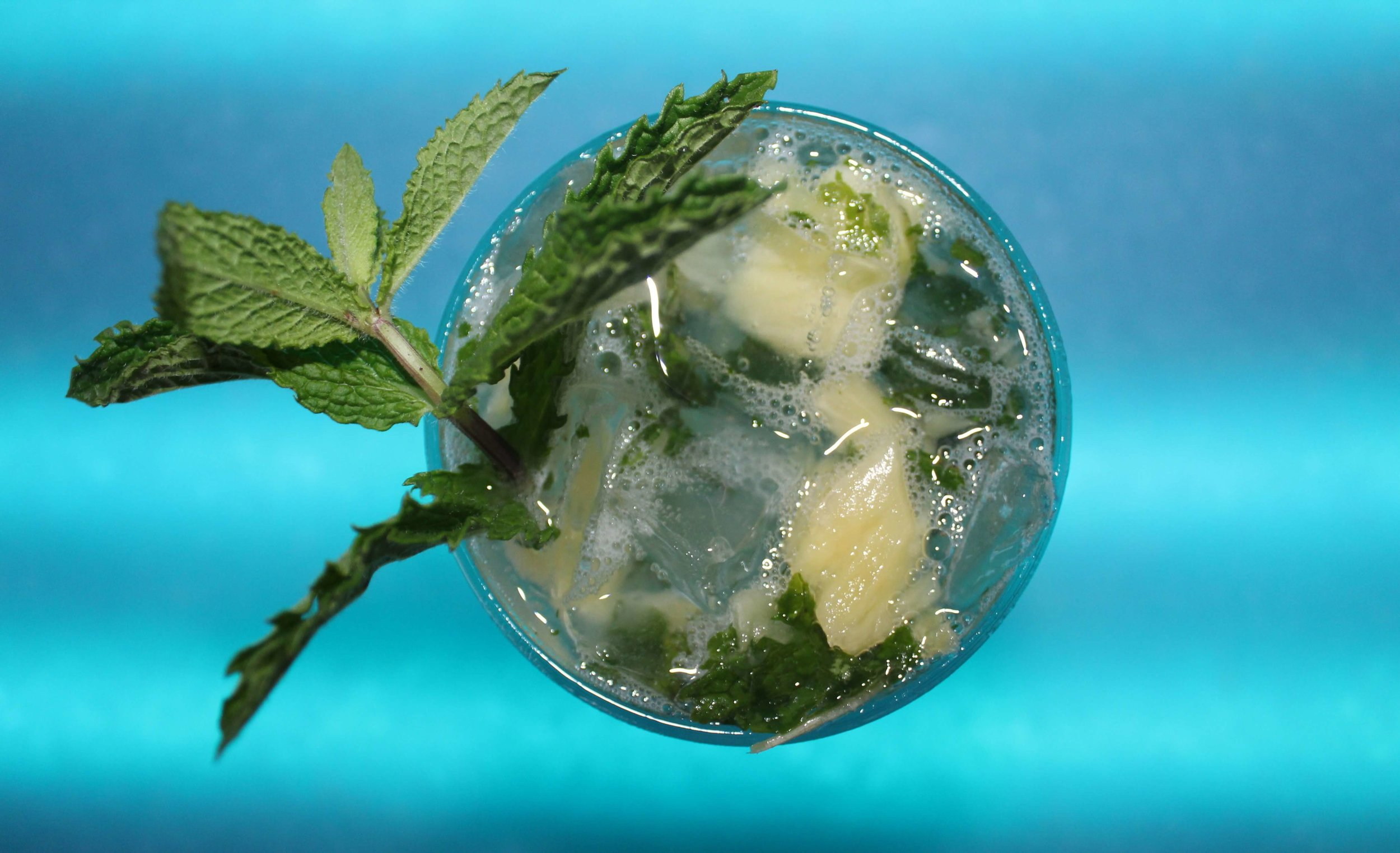 Never-Say-Never_Gallery-Page-Pineapple-Mojito.JPG