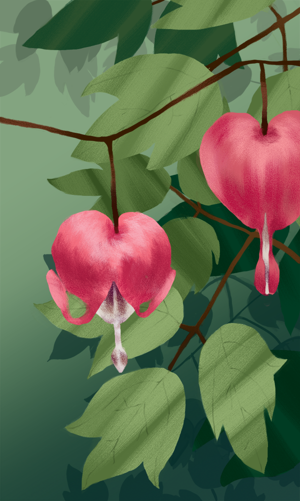Website Bleeding Hearts.png