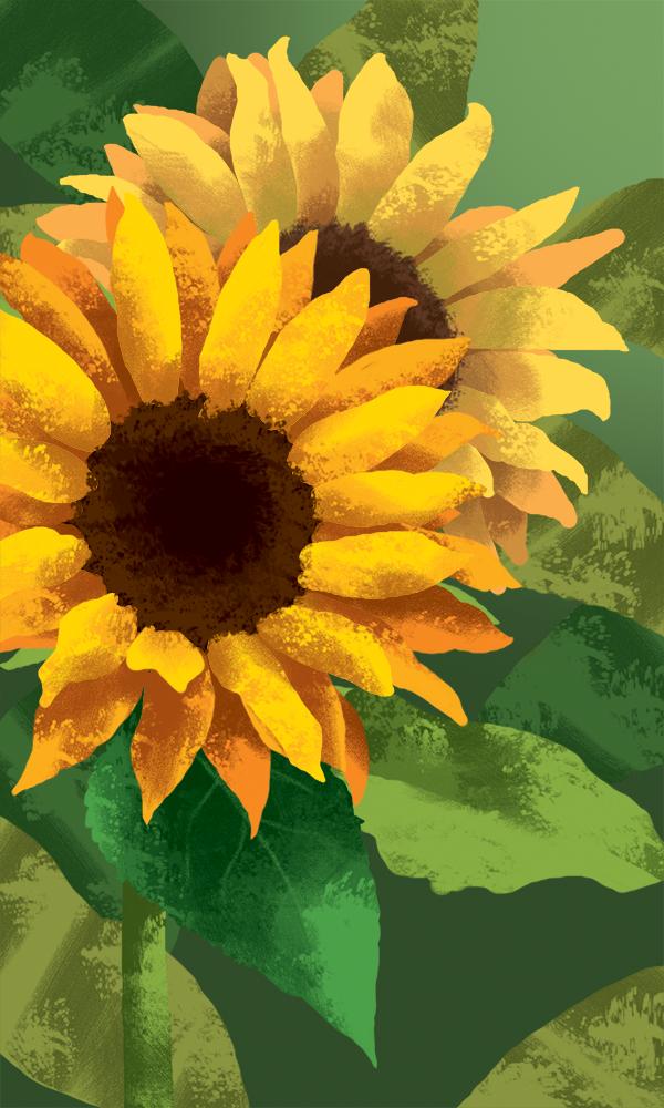 Website Sunflower.png