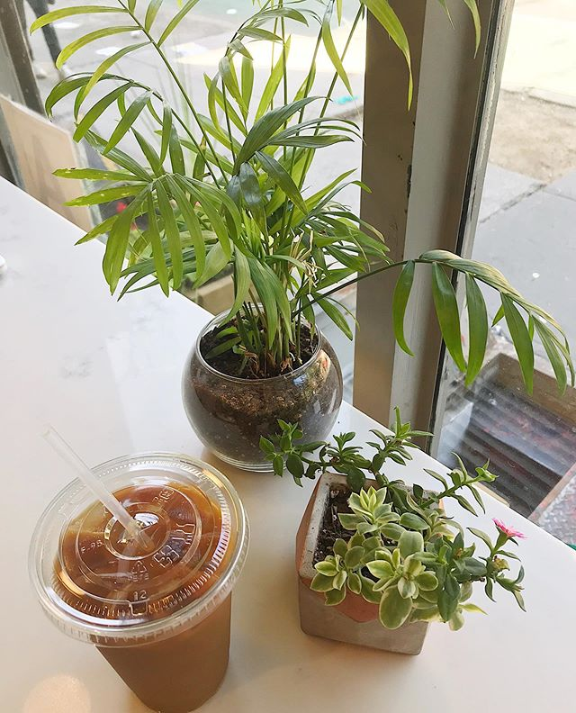 🌱Monday morning coffee with a side of plants.🌱 Start off the week by doing 1 thing beneficial to you. • • • • • #mentalhealth #selfcare #mentalhealthawareness #therapy #nyctherapist #selflove #wellness #mondaymotivation #therapywithab