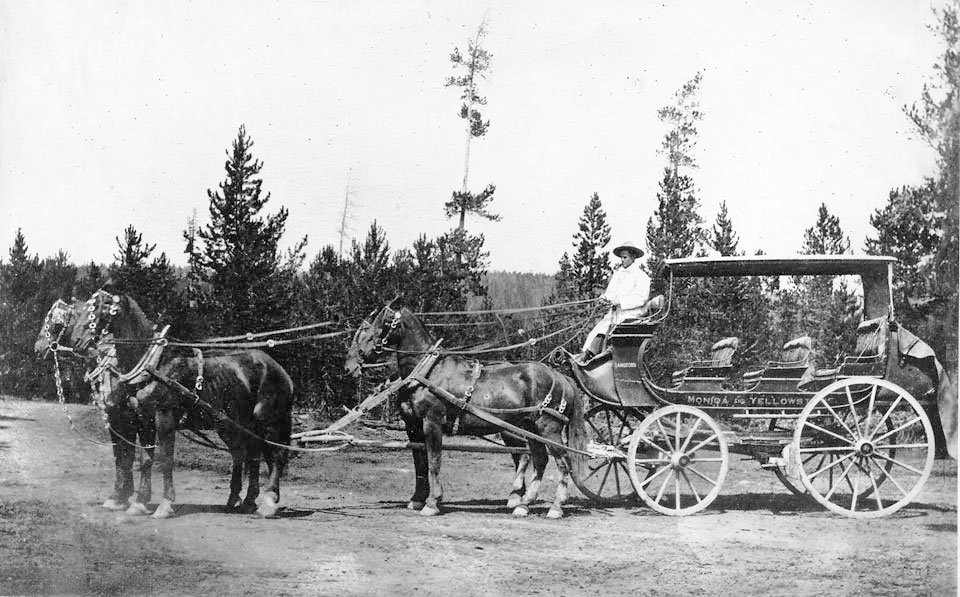 StageCoaches -