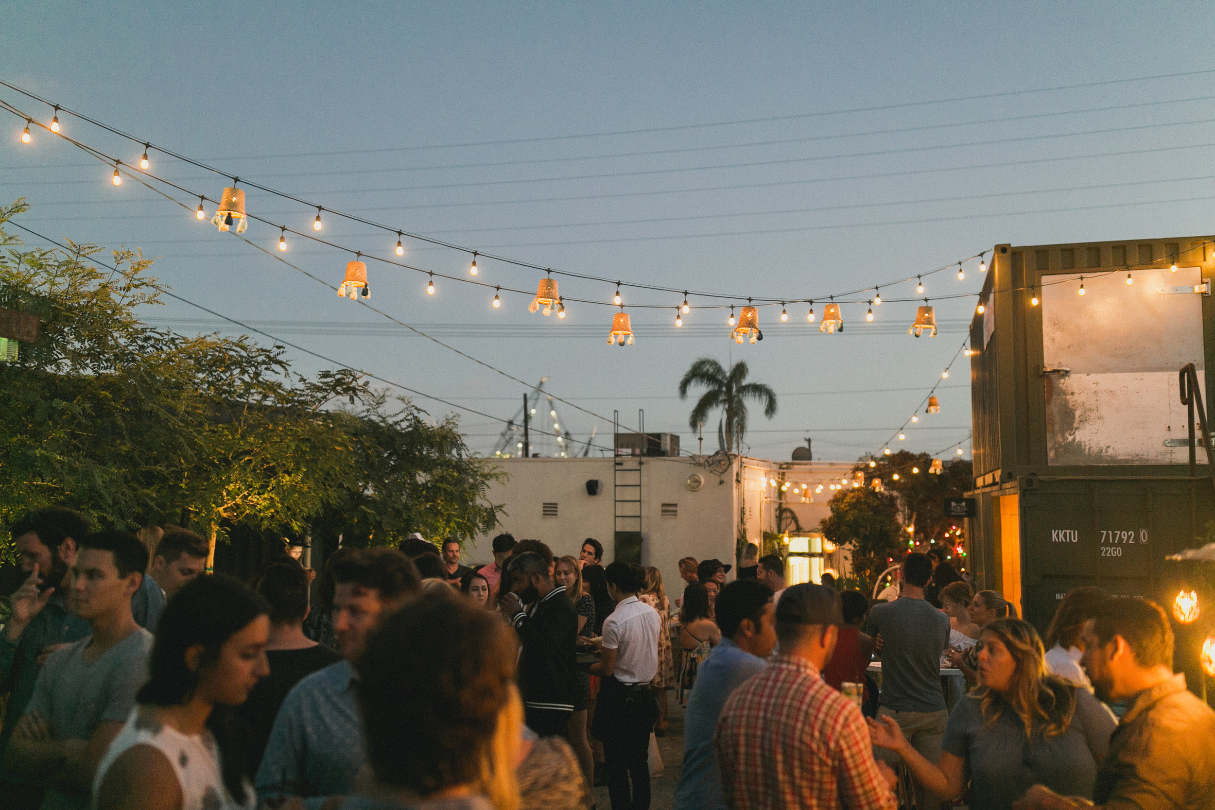 BARRIO LOGAN PARTY