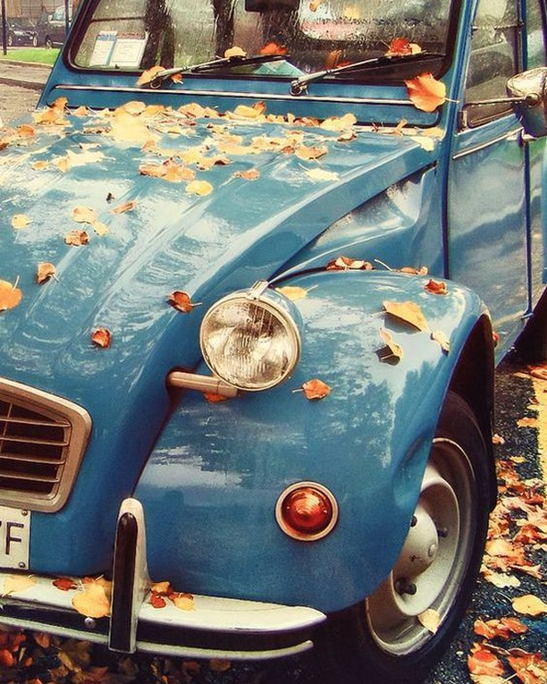 🍂🍂 . . . . .  #ecoscents #watchthisspace #californiascents #airfreshener #carcare #distributor #carpark #autumnleaves #frenchblue #detailingworld #carsdaily #carsofinsta #carlover #carlovers