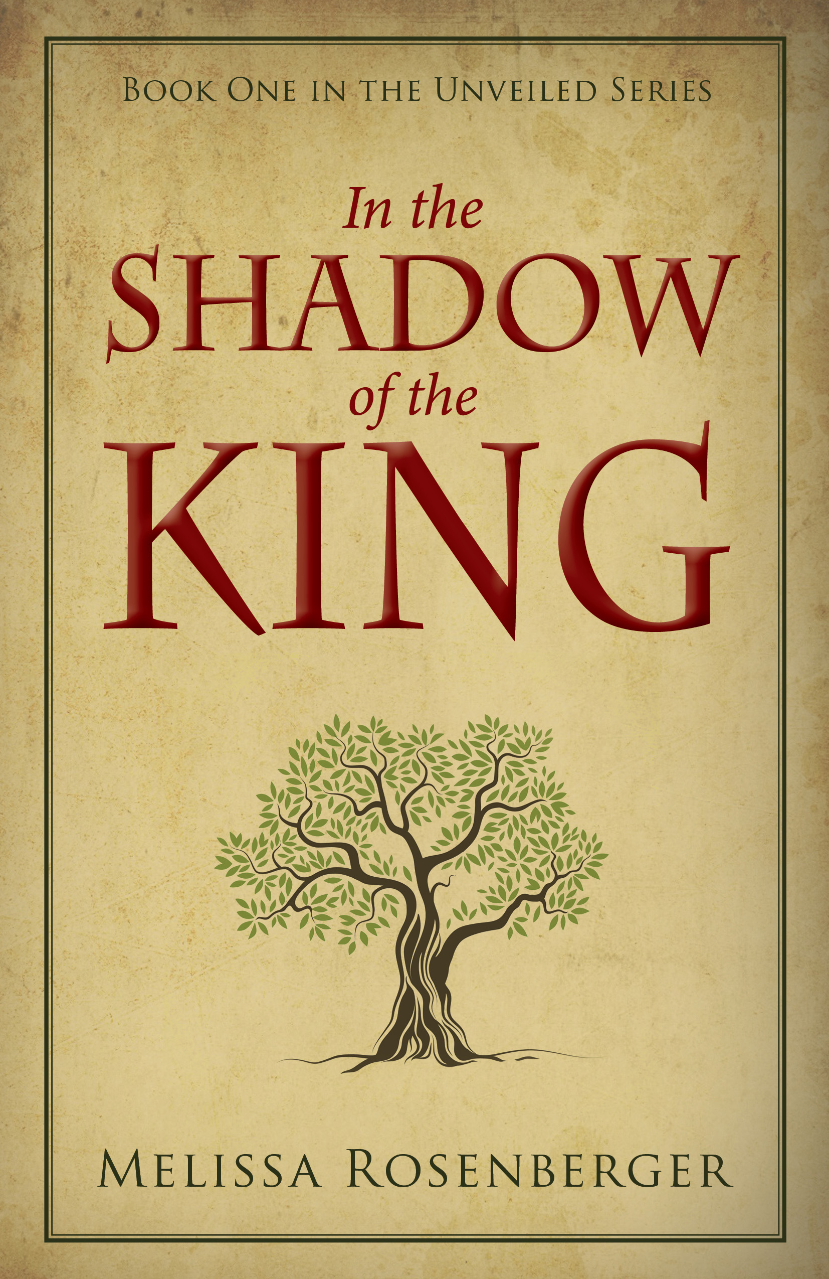 In the Shadow of the King Biblical Fiction Melissa Rosenberger